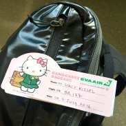 Cutest baggage tag ever!