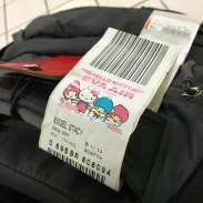 Cutest checked bag tag ever